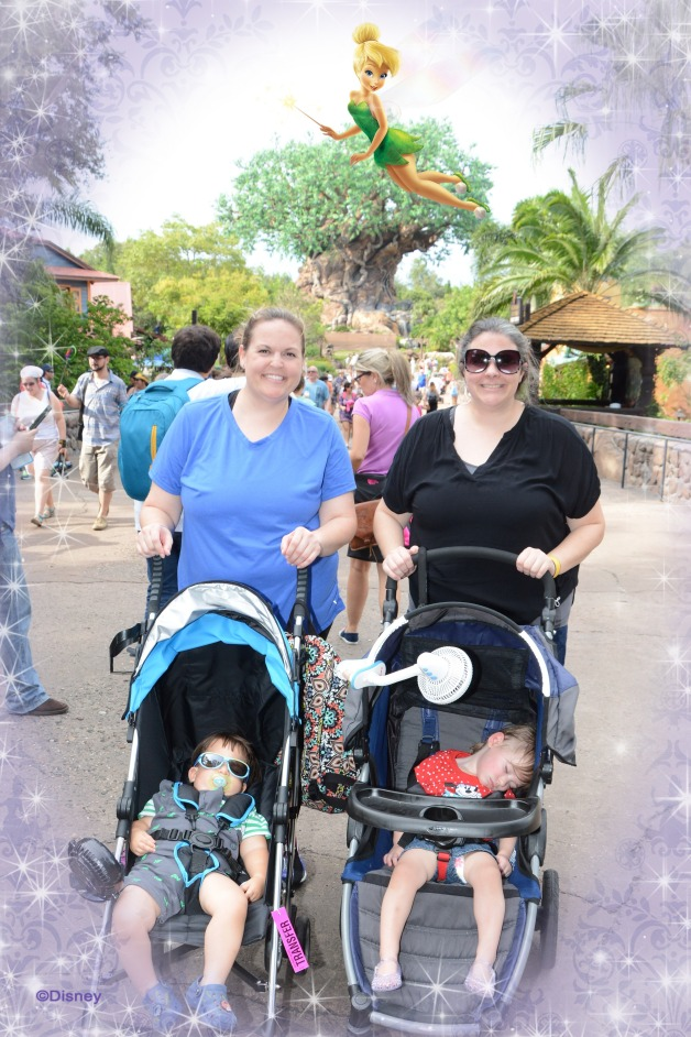 photopass_visiting_ak_7803885032